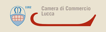 logo camera di commercio di lucca